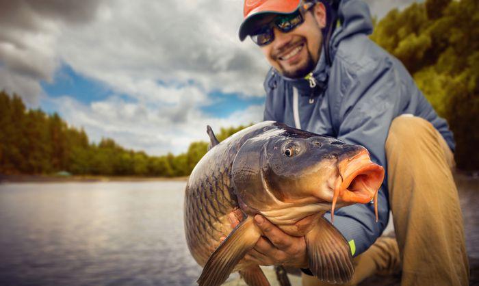 Nash Tackle - Carp Fishing Tackle - Carp Corral